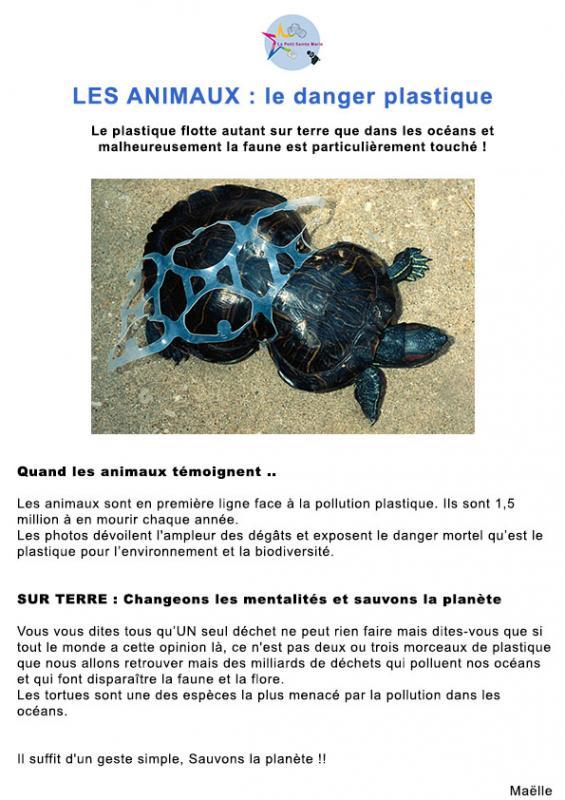 Les Animaux: le danger plastique